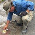 Legyilkolt halasiak nevei járdáinkon - botlató kövek városunkban
