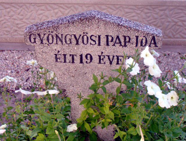 gyongyosi_pap_ida2.png