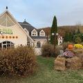 Villapark Várgesztes őzikéje, négylábú recepciósa és mesebeli világa