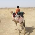 3 nap a sivatagban