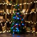 4 különleges tipp karácsonyfa fotózáshoz