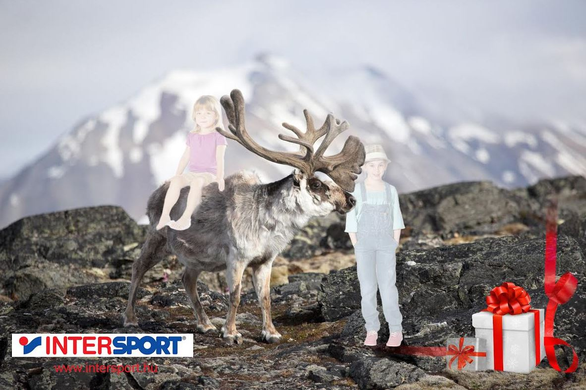 intersport_greenbox_fotozas4.jpg