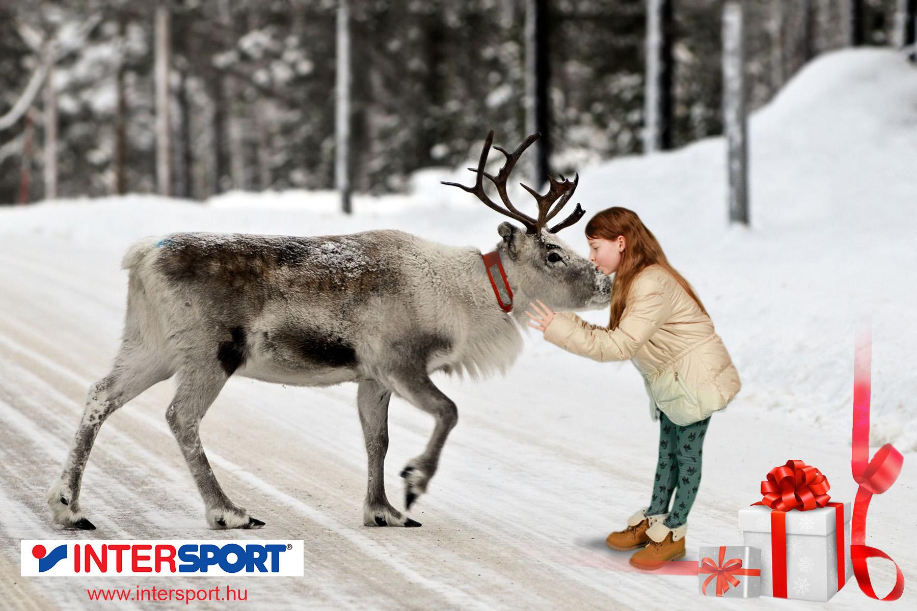intersport_greenbox_fotozas2.jpg
