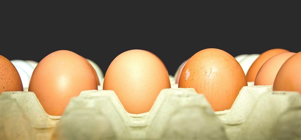eggs-food-tray-85080.jpg