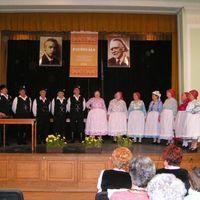 Fesztivál-díjat nyertek a felnémetiek a Palócgálán