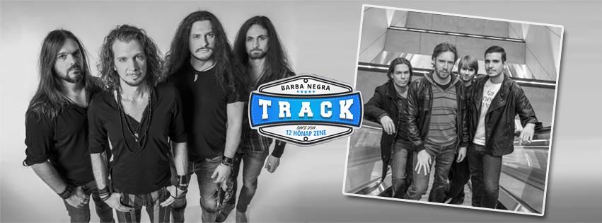 track0803.jpg
