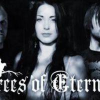 Trees Of Eternity: új videó és nagylemez novemberben