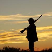 Hobbija a vadászat? A fegyvertároló elengedhetetlen!