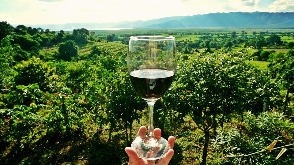 wine-2173239_960_720.jpg
