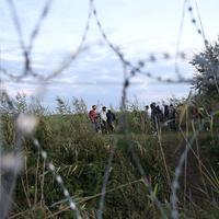 A menekültek a kormány játékszerei