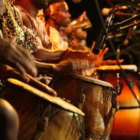 Veszprémi Nyári Fesztivál 2008: Afrika est - Bongo Man - képek