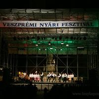 Veszprémi Nyári Fesztivál 2008 - Folklórparádé - képek 04.
