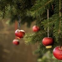 A karácsonyfa-állítás hagyománya Somogyban