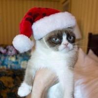 Súlytalan karácsony