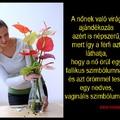 A virágajándékozás szimbolikájáról