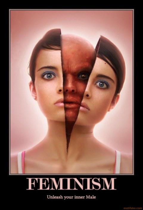 femins.jpg