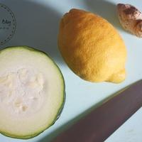 Fermentált citromos-gyömbéres cukkini