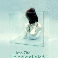 Hangok és hullámok - Izsó Zita könyvbemutatójáról