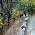 Vezesd le a stresszt: sétálj az erdőben