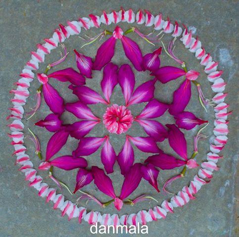 Danmala_mandala.jpg