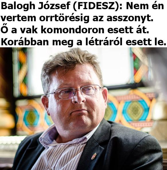 komondor_Balogh.png