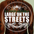 """Lloyd Banks """"Large On The Streets"""""""
