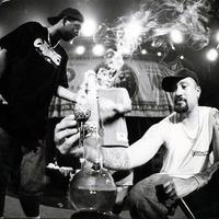 Hova tűnt Cypress Hill?: Rise Up