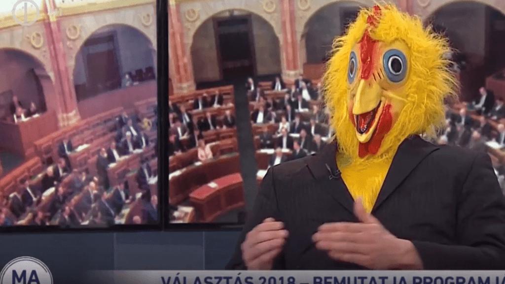 csirke.png
