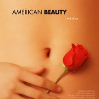 Amerikai szépség - ma a Bem mozi műsorán!