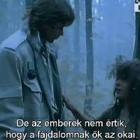 A kölyök (1994)