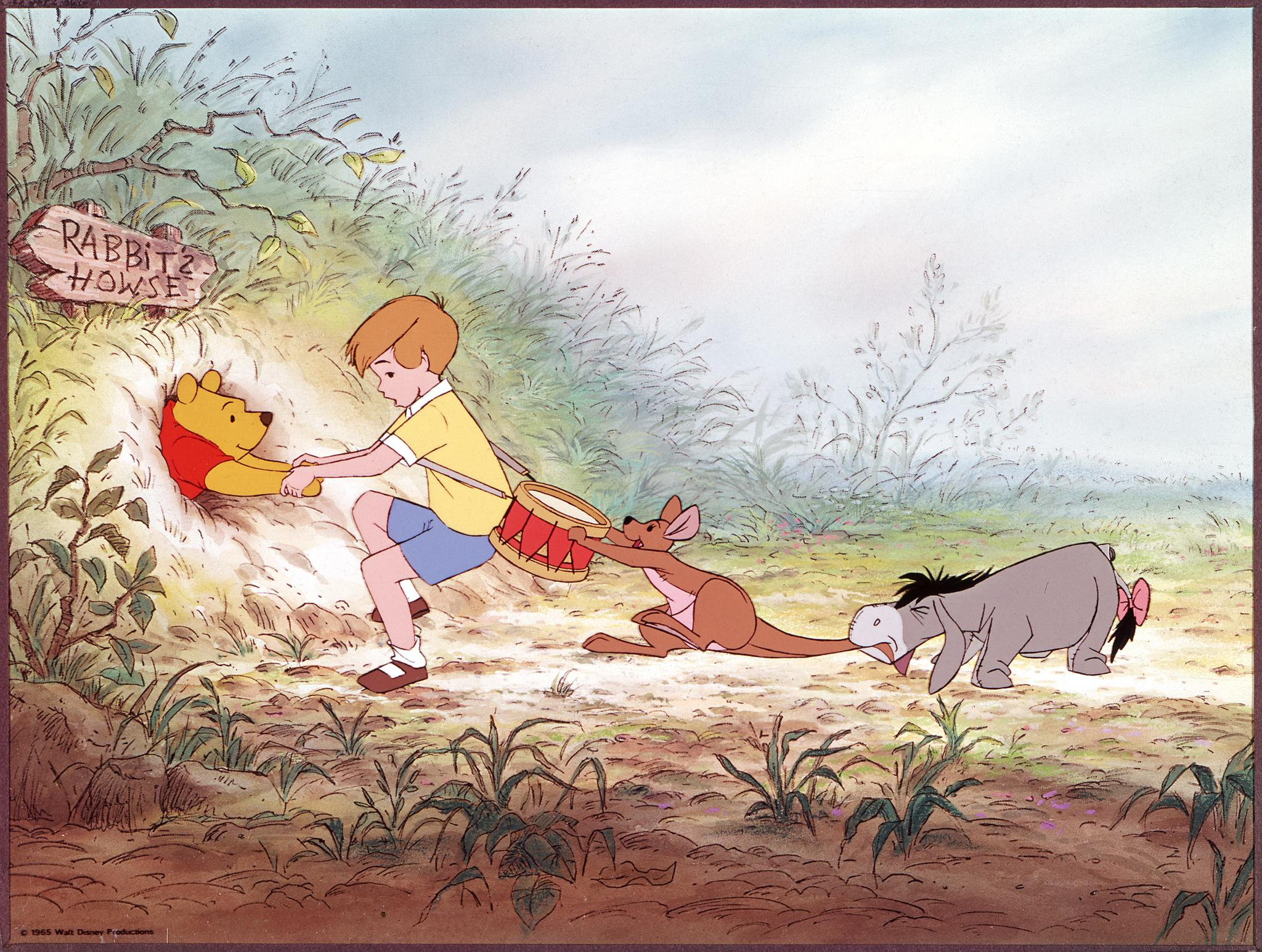 the-many-adventures-of-winnie-the-pooh-large-picture.jpg