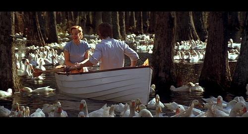 th notebook duck.jpg