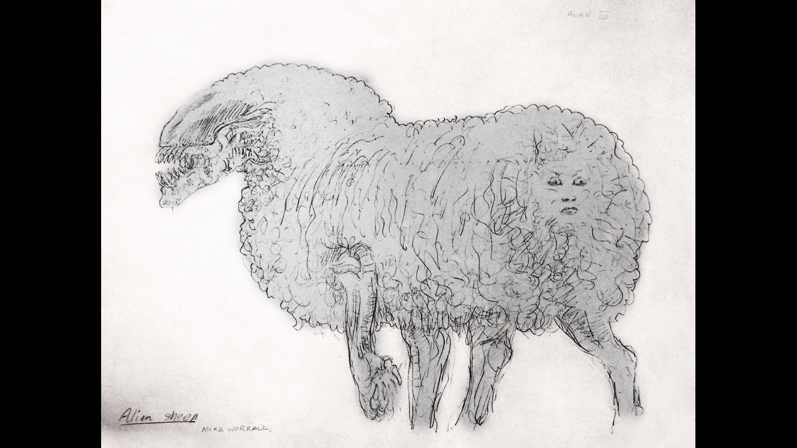 mutant-sheep.jpg