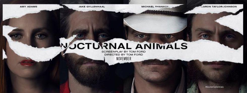 nocturnal-animals-title-banner.jpg