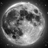 Will Gluck készítheti a Sex on the Moont