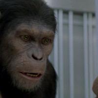 Box Office: Még mindig népszerű A majmok bolygója
