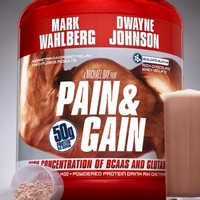 Pain and Gain poszter