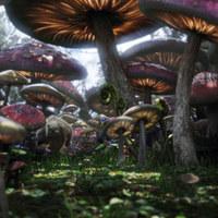 Néhány kép az Alice Csodaországban filmből és egy videó a Bolondos Kalaposról