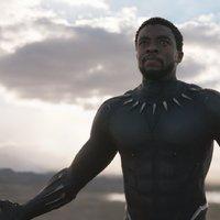 Király. Hős.: Black Panther-trailer