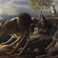 A dzsungel fia: Mowgli: Legend of the Jungel-trailer + poszter