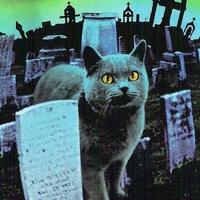 Készül a Kedvencek temetője remake