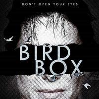Ne nyisd ki a szemed!: Bird Box-poszter