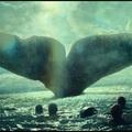 Óriás bálna - A tenger szívében
