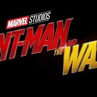 A Hangya 2 megváltoztathatja a többi Marvel film sorsát!