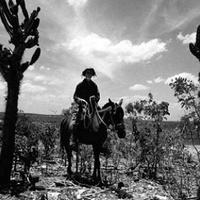 Paár Ádám: Az éhség mozija – a latin-amerikai újhullám