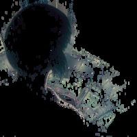 Neuro-kibernetikus odüsszeia - Páncélba zárt szellem (1995)