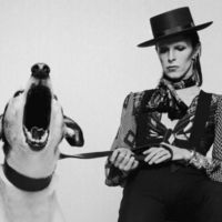 Az ember, aki nem volt hajlandó megöregedni - David Bowie (1947-2016)