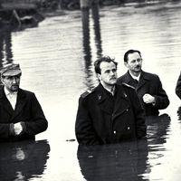 1956 emlékezete - Királyi többes