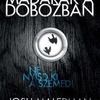 A félelem szíve - Josh Malerman: Madarak a dobozban