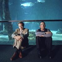 Mocskos zsaru 2.0, és a komfortos akvárium